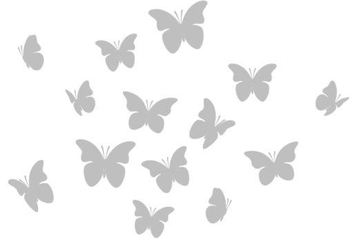 14-SB-Butterflies1
