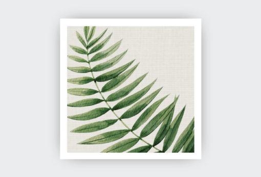 botanical2