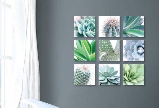Aloe Blocks 9